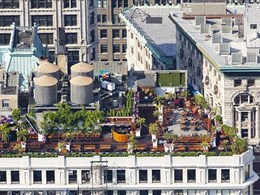 Key considerations for creating a commercial rooftop garden