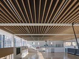 JDH Architects' school hall ceiling features economical MAXI BEAM