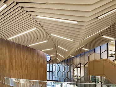 Acoustic Timber Ceiling Commercial Building Foyer