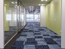 Carpet tile selection showcases Ontera's versatility in Wellington NZ office refurbishment