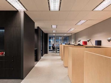 Workstations at the new AACA Sydney office. Photography by Tom Ferguson