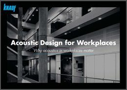 Acoustic Design for Workplaces: Why acoustics in workplaces matter