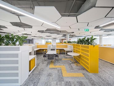 Armstrong acoustic systems in office