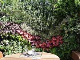Vertical gardening goes modular with Vista Concepts system
