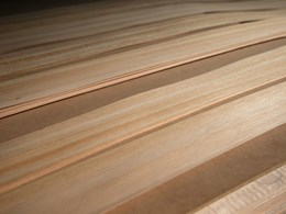 Tasmanian veneers for those seeking uniformity or distinctiveness