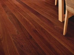 New interior flooring stain by Cabot's enhancing natural grain of timber