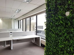 Popular artificial green wall chosen for UNICEF Australia office