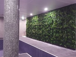 Indoor pool at multi-residential development gets a green wall