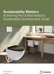 Sustainability matters: Achieving the United Nations Sustainable Development Goals