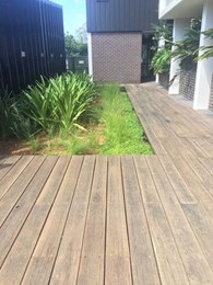 WiseWood ensures quality decking installation at residential property