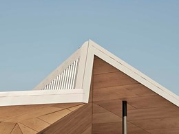 What makes Maxiply plywood perfect for sustainable projects?