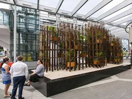 Public art display in Barangaroo precinct features clear acrylic panels