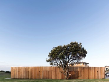 Marks Park Amenities by Sam Crawford Architects. Photography by Brett Boardman