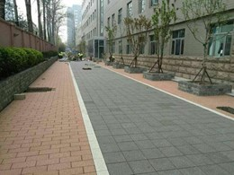 How permeable pavers are saving the environment
