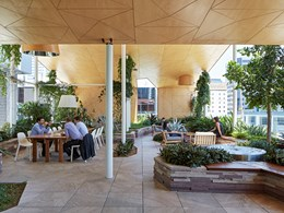 How code changes for timber construction are reshaping the australian sustainability landscape