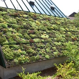 Environmental building designers spur growth in green roofs, insulation, interior finishes and framing applications