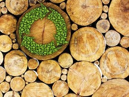 New GBCA webinar on sustainable timber in building; Green Star points on offer