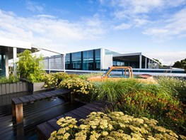 Rooftop garden in Melbourne fosters office liveability