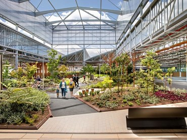 Tonsley Innovation District by Oxigen, Woods Bagot, KBR, WSP, Tridente Architects and RenewalSA. Photography by Dan Schultz