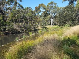 La Trobe Integrated Stormwater Management: A restorative landscape intervention