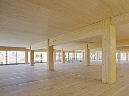 First glimpse inside the world's tallest timber tower