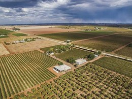 New $119m solar farm in the works for Riverina