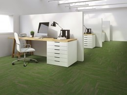 Breaking Ground: new plank carpet tile collection with EcoSoft