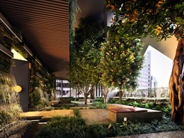 Construction begins on Australia's 'first indoor urban forest' in Melbourne