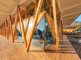 Architectus' award-winning Macquarie University Incubator project features Iron Ash