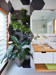 How to visually expand compact bathroom spaces with Kohler and greenery