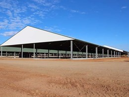 Why structural steel is better than C Purlin for sheds and shelters