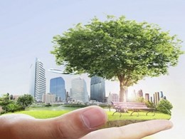Business success rests on sustainability knowledge: Study