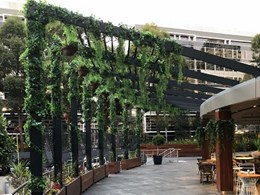 Greenery installation livens up leisure space for office workers