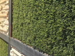 Understanding the pros and cons of artificial garden walls
