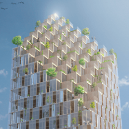 The skyscrapers of the future will be made of wood
