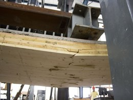 New centre launched in Queensland for timber performance research