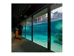 Record Automated Doors install underwater glazing at Sydney Wildlife World