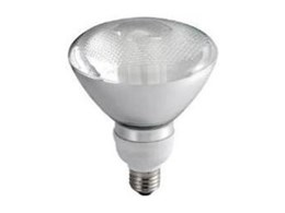 Ace Lighting offers PAR38 compact fluorescent lamps