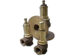 Adjustable relief valve available from All Valve Industries