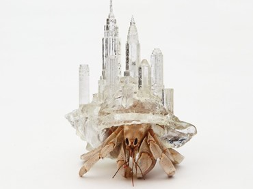 Aki Inomata, Why Not Hand Over a 'Shelter' to Hermit Crabs series, 2009–16. Image: courtesy of Maho Kubota Gallery