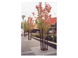 CityGreen root protection systems play essential role in Bankstown council streetscape upgrade