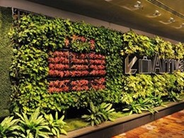 Elmich VGM green signage walls at Changi Airport