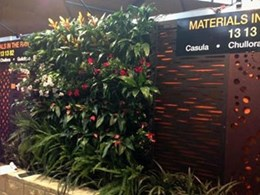 Elmich green wall draws attention at Better Homes and Garden Show