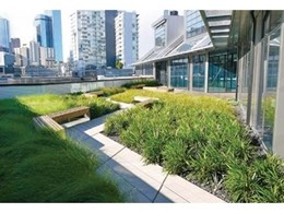 Embracing the green roof garden trend: Environmental, social and financial benefits