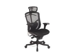 FX Executive chair from Frontline Office Furniture