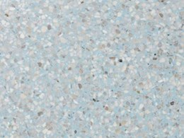 Fibonacci Seascape terrazzo stone tiles – just like real marble