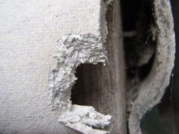Identifying asbestos in the building
