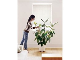 Kresta blinds save energy through effective window insulation