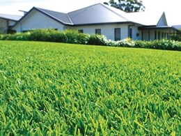Lawn Solutions Australia groups accredited turf brands to simplify buying