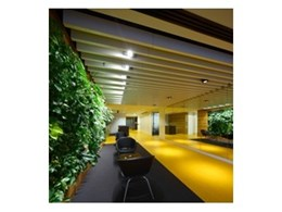 New Supaslat Maxi light-weight decorative timber beams from Supawood Architectural Lining Systems
